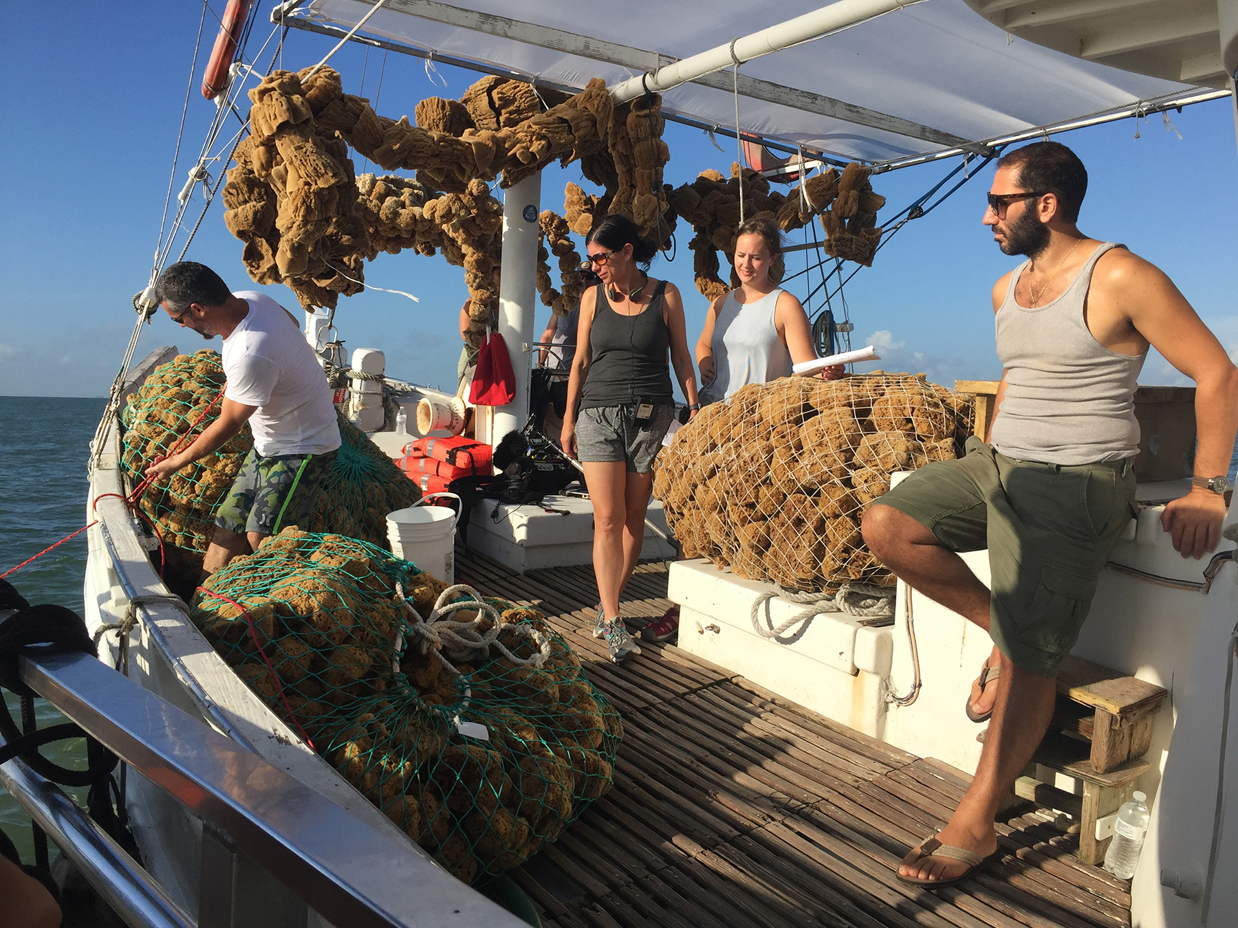 Behind the Scenes on the Sponge Boat